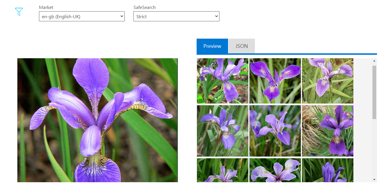 Cognitive Services: Bing Visual Search